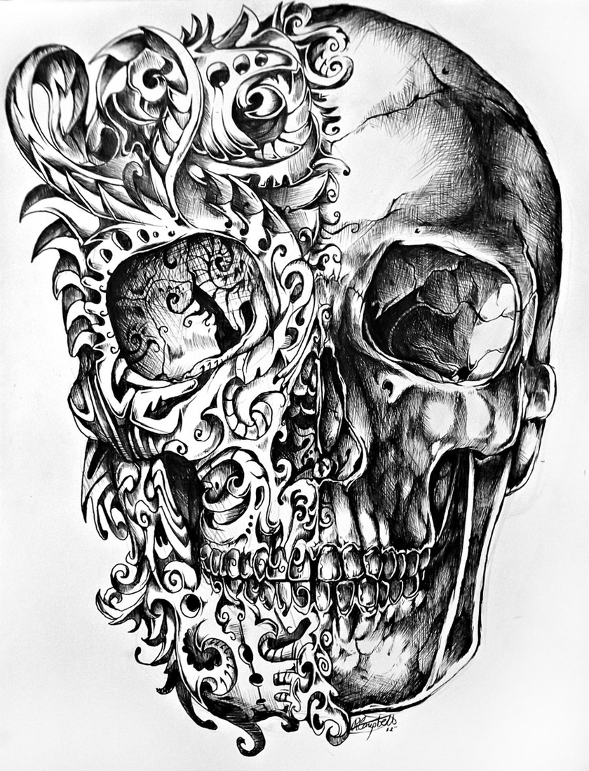 22-Skull-René-Campbell-Art-in-Animal-Doodle-Drawings-www-designstack-co