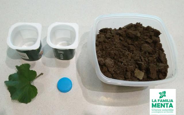 Actividad para peques: La descomposición de las hojas