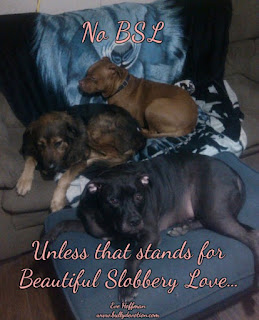 Say No to Breed discrimination! no BSL Unless that stands for Beautiful Slobbery Love