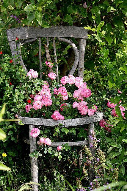 Mon jardin fleuri for Jardin fleuri