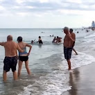 VIDEO: Parents Rescue Children From Sharks Off Florida Beach