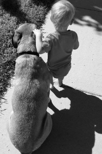 dog and little girl