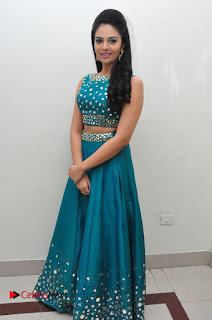 Sree Mukhi Pictures at Gentleman Audio Launch  0113