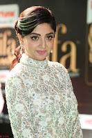 Poonam Kaur in Beautiful Floor Length Gown at IIFA Utsavam Awards 2017  Day 2  Exclusive 36.JPG
