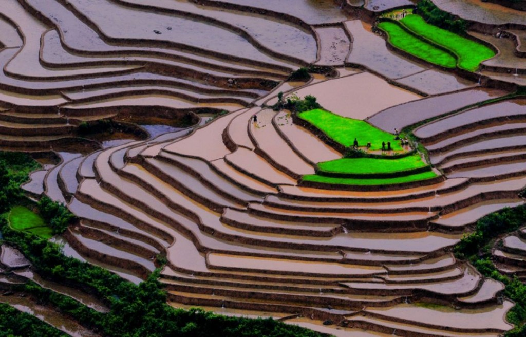 mu cang chai district - photo #18