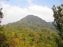 Pico Lang Biang