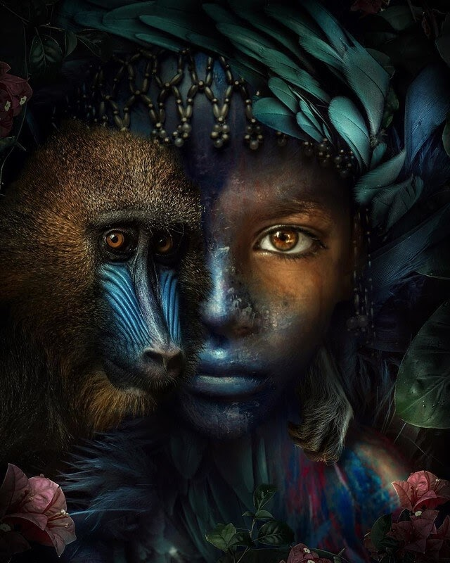 08-Think-colour-Marcel-van-Luit-Digital-Art-Animals-Photos-www-designstack-co