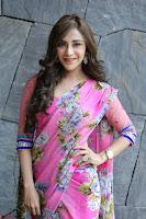 Angela Krislinzki Rogue Movie Fame Telugu Actress in Saree Backless Choli 128.JPG