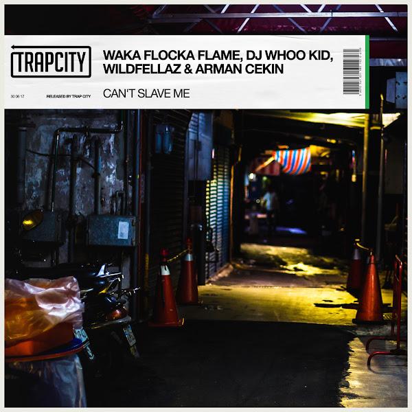 Waka Flocka Flame, DJ Whoo Kid, Wildfellaz & Arman Cekin - Can't Slave Me - Single Cover