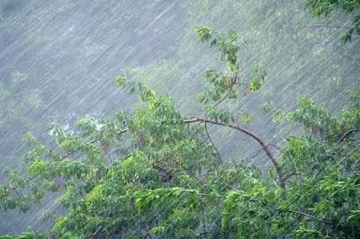 (ФОТО) Неблагоприятные погодные условия в Свердловской области