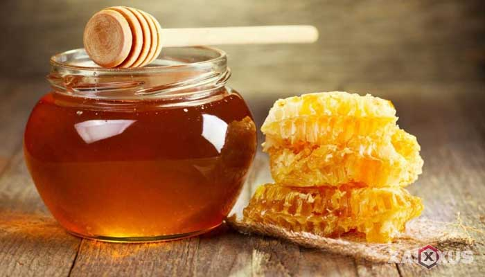 Cara menyembuhkan dan mengobati sariawan dengan madu
