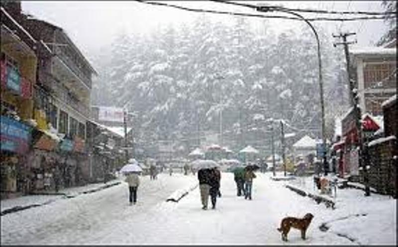Delhi To Shimla Travel Time