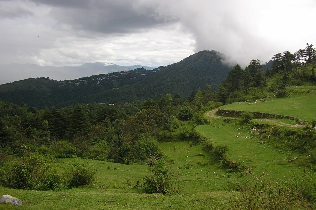 Evergreen Hills in the Monsoon Mist in Mussoorie