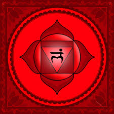 Resultado de imagem para root chakra