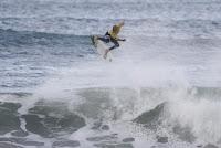 35 John John Florence rip curl pro portugal foto WSL Damien Poullenot