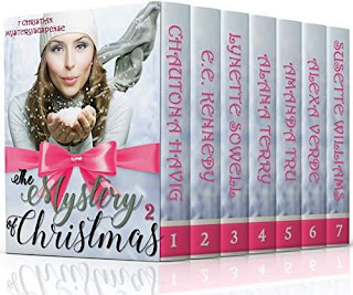 THE MYSTERY OF CHRISTMAS 2 (7 New Christian Mystery/Suspense Novellas)