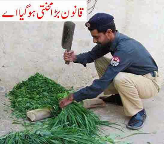Here Is Top Funny Pictures Of Pakistani Police