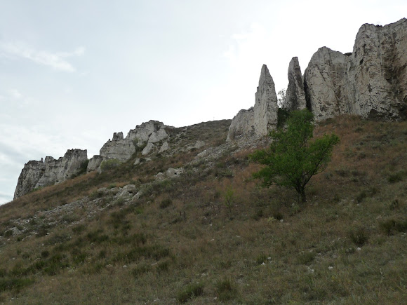Белокузьминовские скалы. Донецкая область. Памятник природы
