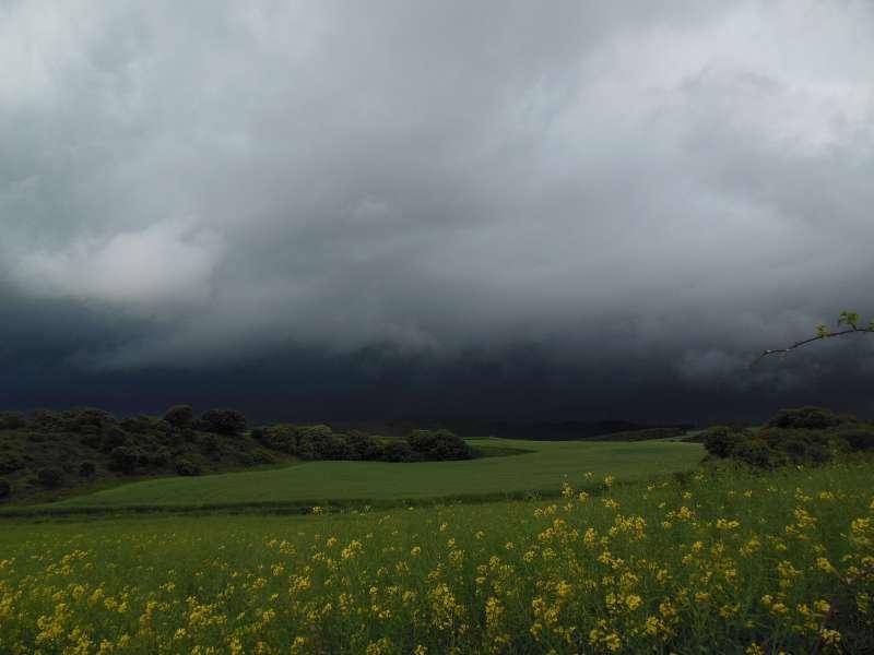 Alto del Perdon, Nawarra, Camino, Jola Stepień