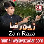 https://www.humaliwalyazadar.com/2018/09/zain-raza-nohay-2019.html