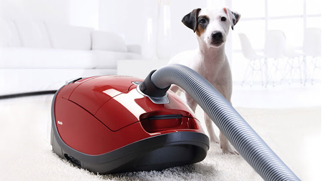 Best Vacuum for Pet Hair 2018