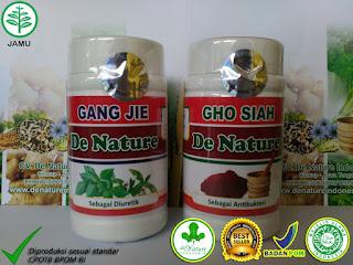 Obat Sipilis Kencing Sakit Dan Keluar Nanah De Nature Indonesia