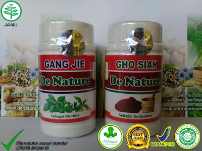 OBAT HERBAL GEJALA SIPILIS RAJA SINGA DE NATURE