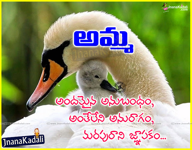 Here is a Nice Telugu Quotes Garden and Mother Quotations online, Top Telugu Inspiring Quotes Garden, Inspiring Mother Quotes and Messages, Top Mother Love Images, I Love You Mother Messages in Telugu language, Best Telugu Mother Quotes Designs, Happy Mothers Day Best Motivated Lines with Quotes Garden in Telugu, I Love My Mom Telugu Thoughts, Mother Poems in Telugu Language.