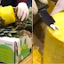 VIDEO: POLICE DISCOVERED 745 KILOS OF COCAINE HIDDEN IN FRESH PINEAPPLES