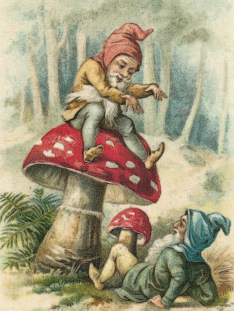 magical gnome dwarf creatures toadstools mushrooms forest wood