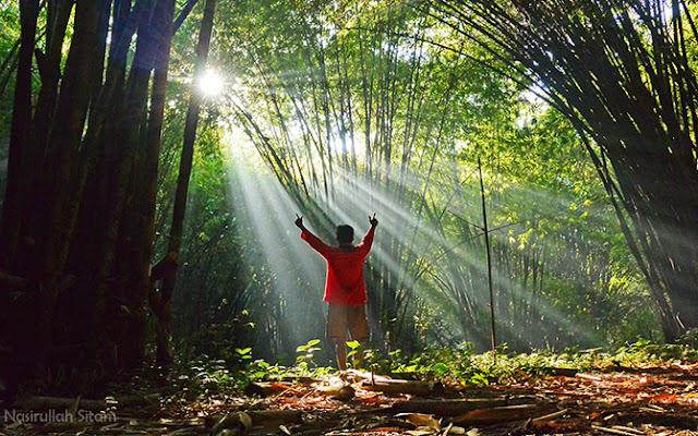 Mengabadikan diri di Kebun Bambu (Boon Pring) Andeman, Sanankerto