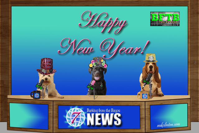 Happy New Year from the BFTB NETWoof News Team