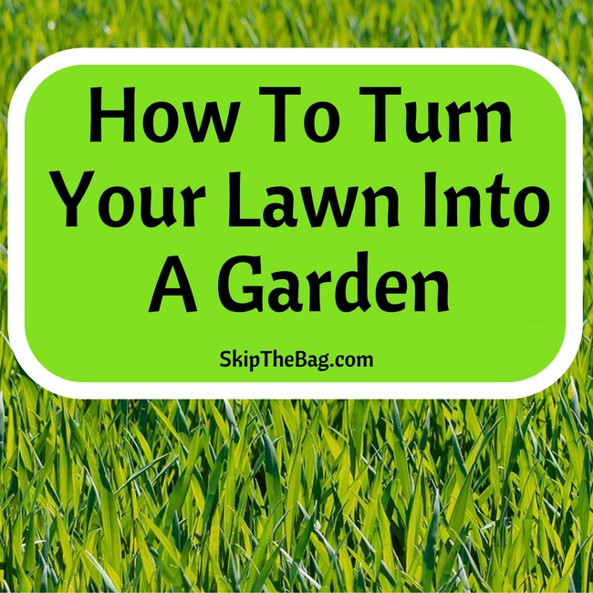How To Turn Your Lawn Into A Garden | Organic, till-free, weed free garden creation