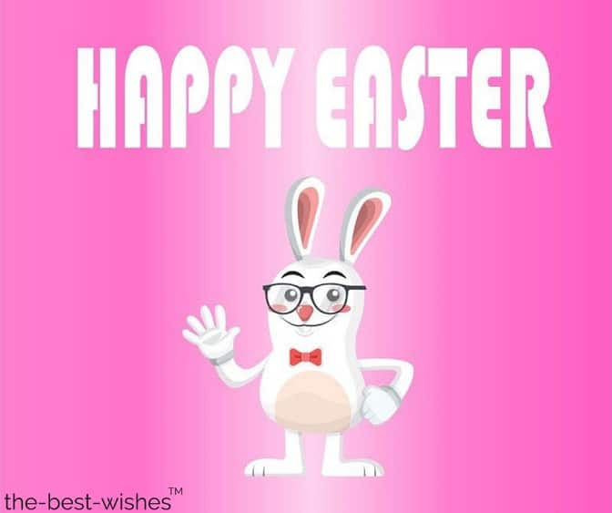 funny easter wishes with white rabbit