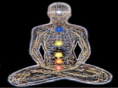 Gambar Anatomy Fisiologi Jaringan Penunjang Tubuh