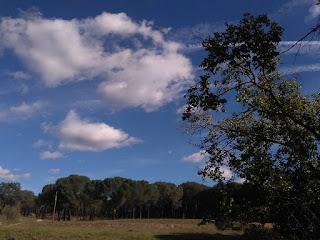 admirables-cuadros-de-paisajes