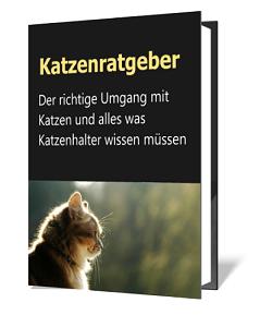 http://ratgeber-katalog.blogspot.de/2018/01/katzenratgeber-der-richtige-umgang-mit.html