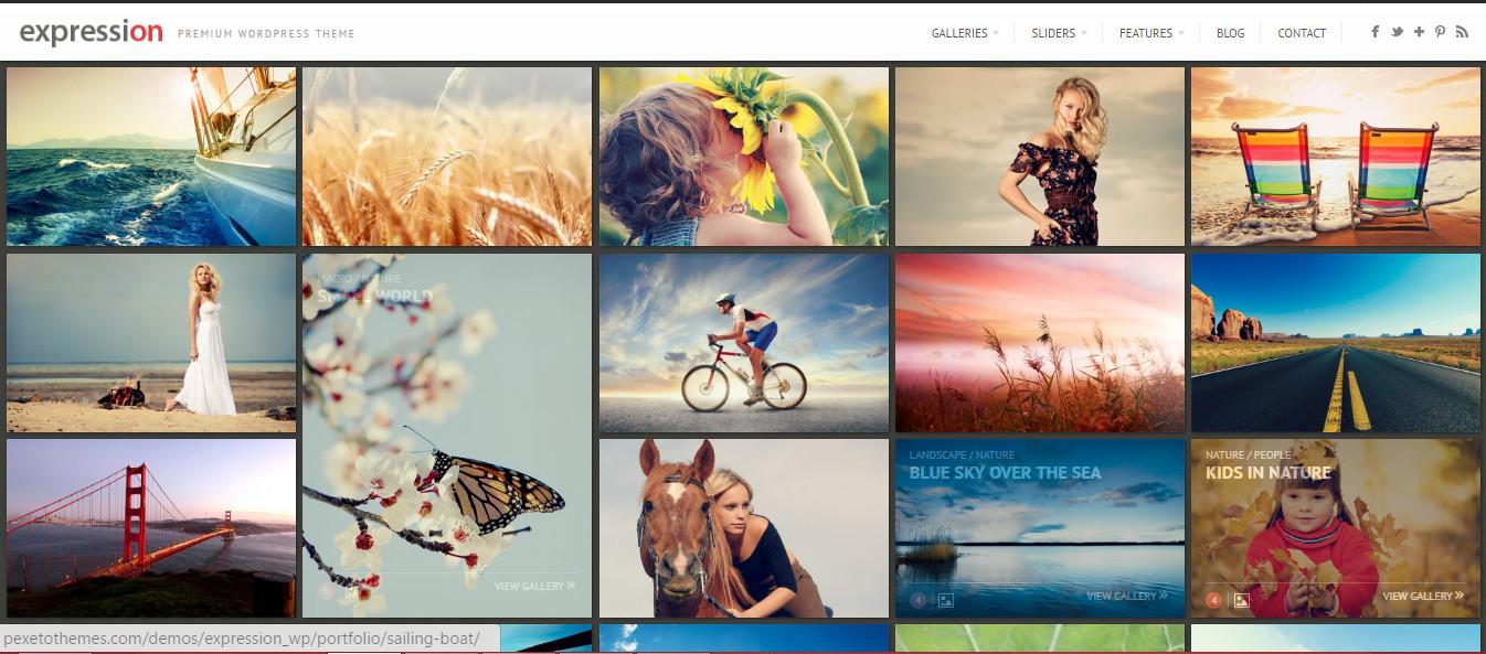 Expression- WordPress Grid Photography Theme
