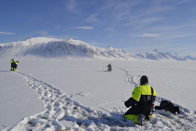 Coal mine dust lowers spectral reflectance of Arctic snow by up to 84 percent