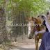 Video | Nandy - Wasikudanganye (HD) Watch/Download