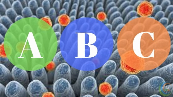 Difference between hepatitis A, B and C