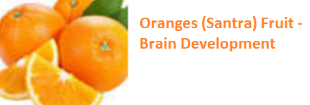 Health Benefits of Oranges (Santra) - Brain Development