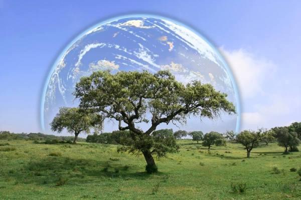 97 εκατ. ευρώ πρόστιμo στην Ελλάδα για περιβαλλοντικές παραβάσεις