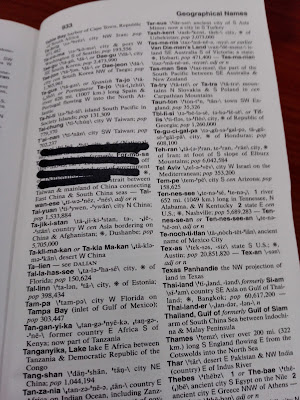 黒いマジックインクで辞書の内容が部分的に消されている