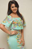 Nikki Galrani in Cute Dress Dress At Marakathamani Success Meet ~  Exclusive 003.JPG