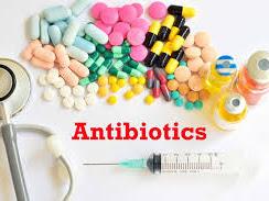 Efek Samping Antibiotik Untuk Tubuh