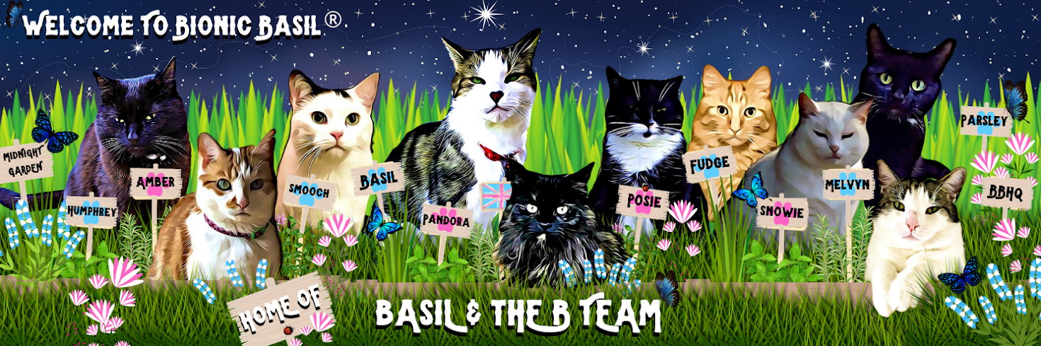 Bionic Basil® home of Basil and The B Team