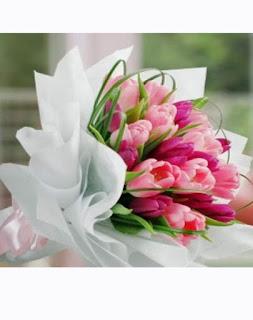 Toko Bunga Lenteng Agung