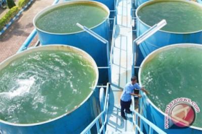 Masyarakat Disarankan Tidak Minum Air Sumur, Ini Alasannya