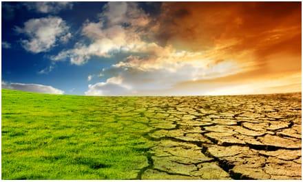تأثيرات التغيرات المناخية على الأمن الغذائي
